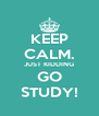 KEEP CALM. JUST KIDDING GO STUDY! - Personalised Poster A4 size
