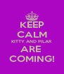 KEEP CALM KITTY AND PILAR ARE  COMING! - Personalised Poster A4 size
