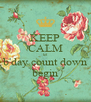 KEEP CALM let  b'day count down begin - Personalised Poster A4 size
