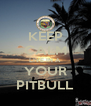 KEEP CALM LIVE IN A YOUR PITBULL - Personalised Poster A4 size