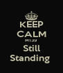 KEEP CALM M139 Still Standing  - Personalised Poster A4 size