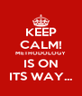 KEEP CALM! METHODOLOGY IS ON ITS WAY... - Personalised Poster A4 size