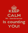 KEEP CALM Mr. Steinbrenner Is counting YOU! - Personalised Poster A4 size