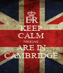 KEEP CALM NIGGAS ARE IN CAMBRIDGE - Personalised Poster A4 size
