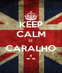 KEEP CALM O CARALHO -'- - Personalised Poster A4 size