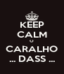 KEEP CALM O CARALHO ... DASS ... - Personalised Poster A4 size