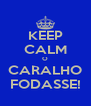 KEEP CALM O CARALHO FODASSE! - Personalised Poster A4 size