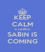 KEEP CALM o caralho! SABIN IS COMING - Personalised Poster A4 size