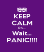 KEEP CALM Oh... Wait... PANIC!!!! - Personalised Poster A4 size