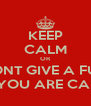 KEEP CALM OR I DONT GIVE A FUCK IF YOU ARE CALM - Personalised Poster A4 size