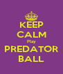 KEEP CALM Play PREDATOR BALL - Personalised Poster A4 size