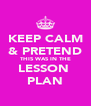 KEEP CALM & PRETEND THIS WAS IN THE LESSON  PLAN - Personalised Poster A4 size