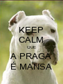 KEEP CALM QUE A PRAGA É MANSA - Personalised Poster A4 size