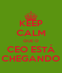 KEEP CALM QUE O CEO ESTÁ CHEGANDO - Personalised Poster A4 size