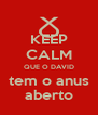 KEEP CALM QUE O DAVID tem o anus aberto - Personalised Poster A4 size