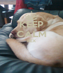 KEEP CALM REX   - Personalised Poster A4 size