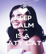KEEP CALM ROLA IS A KATY CAT  - Personalised Poster A4 size