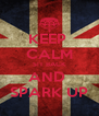 KEEP  CALM S!T BACK AND  SPARK UP - Personalised Poster A4 size