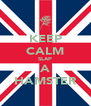 KEEP CALM SLAP A HAMSTER - Personalised Poster A4 size