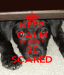 KEEP CALM SO DON`T BE SCARED - Personalised Poster A4 size