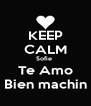 KEEP CALM Sofie  Te Amo Bien machin - Personalised Poster A4 size