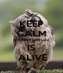 KEEP CALM SPUNKYOWL22 IS  ALIVE - Personalised Poster A4 size