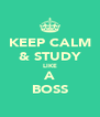 KEEP CALM & STUDY LIKE A BOSS - Personalised Poster A4 size