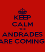 KEEP CALM THE ANDRADES ARE COMING! - Personalised Poster A4 size