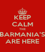 KEEP CALM THE BARMANIA'S ARE HERE - Personalised Poster A4 size