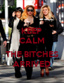 KEEP CALM  THE BITCHES ARRIVED - Personalised Poster A4 size