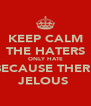 KEEP CALM THE HATERS ONLY HATE BECAUSE THERE JELOUS  - Personalised Poster A4 size