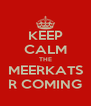 KEEP CALM THE MEERKATS R COMING - Personalised Poster A4 size