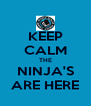 KEEP CALM THE NINJA'S ARE HERE - Personalised Poster A4 size