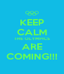 KEEP CALM THE OLYMPICS ARE COMING!!! - Personalised Poster A4 size