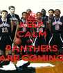 KEEP CALM the  PANTHERS ARE COMING - Personalised Poster A4 size