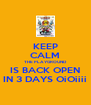 KEEP CALM THE PLAYGROUND IS BACK OPEN IN 3 DAYS OiOiiii - Personalised Poster A4 size