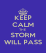 KEEP CALM THE  STORM WILL PASS - Personalised Poster A4 size