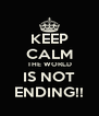 KEEP CALM THE WORLD IS NOT ENDING!! - Personalised Poster A4 size