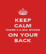 KEEP CALM THERE'S A BIG SPIDER ON YOUR BACK - Personalised Poster A4 size
