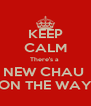 KEEP CALM There's a  NEW CHAU  ON THE WAY - Personalised Poster A4 size