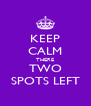 KEEP CALM THERE TWO SPOTS LEFT - Personalised Poster A4 size