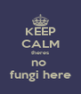KEEP CALM theres no  fungi here - Personalised Poster A4 size