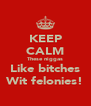KEEP CALM These niggas Like bitches Wit felonies! - Personalised Poster A4 size