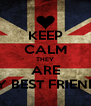 KEEP CALM THEY ARE MY BEST FRIENDS - Personalised Poster A4 size