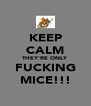 KEEP CALM THEY'RE ONLY FUCKING MICE!!! - Personalised Poster A4 size