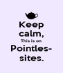 Keep calm, This is on Pointles- sites. - Personalised Poster A4 size