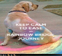 KEEP CALM TO EASE HIS RAINBOW BRIDGE JOURNEY - Personalised Poster A4 size