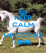 KEEP CALM  UNICORNS HERE - Personalised Poster A4 size