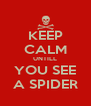 KEEP CALM UNTILL YOU SEE A SPIDER - Personalised Poster A4 size