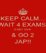 KEEP CALM... WAIT 4 EXAMS  2 GET OVA & GO 2 JAP!! - Personalised Poster A4 size
